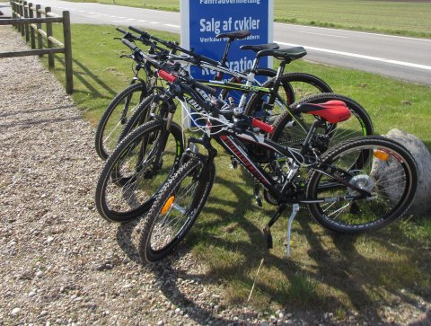 Lej mountainbikes